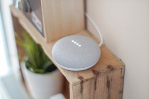 voice search device